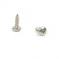 Sharp Point SS Screws (bag of 100)